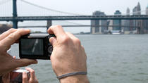 6-Hour New York City Tour with Driver-Guide and Separate Guide Option, New York City, Custom ...