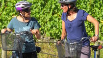 Full-Day Marlborough Wine Region Guided Bike Tour, Blenheim, Wine Tasting & Winery Tours