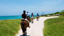 Aruba Horseback Riding and Snorkeling Tour, Aruba, null