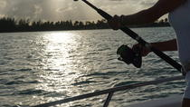 Small-Group Fishing Tour from Punta Cana, Punta Cana, Fishing Charters & Tours