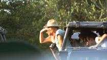 Private Day-Trip to Yala National Park Including BBQ Dinner on the Beach, Yala National Park,...