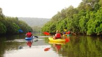 Goa Kayaking in Spike's River, Goa, Multi-day Tours