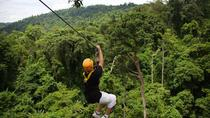 Flight of the Gibbons from Chiang Mai, Chiang Mai, Ziplines