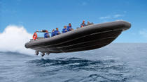 High-Speed Offshore Thrill Ride to Bondi Beach, Sydney, Jet Boats & Speed Boats