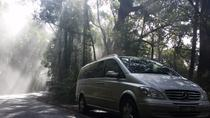 Melbourne Shore Excursion: Small-Group Yarra Valley Day Trip Including Healesville Sanctuary,...