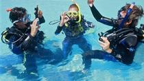 Discover Scuba Diving Including Sightseeing Boat Tour , Los Cabos, Scuba Diving
