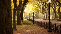 Sunset Tour of Central Park, New York City, Walking Tours