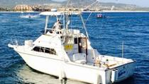 Private Tour: Sport Fishing in Cabo San Lucas, Los Cabos