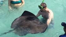 Stingray City plus Famous Beaches and History in Antigua, St John's