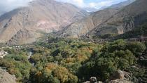 Guided Day Trip to Atlas Mountains from Marrakech , Marrakech, Day Trips