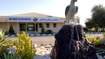 Falcon Hospital Tour Abu Dhabi, Abu Dhabi, Nature & Wildlife