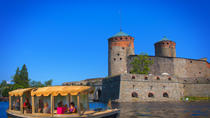 Private Ecoboat Charter Cruise in Savonlinna, Lakeland, Day Cruises