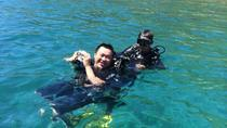 Private Nha Trang Snorkeling Day Trip, Nha Trang, Private Day Trips