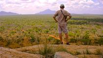 13-Day Kenya Safari: Meru and Aberdare National Parks, Samburu, Ol Pejeta and Solio Reserves and ...