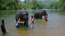 Private Tour Elephant Bath in Kanchanaburi, Bangkok, Full-day Tours