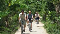 Private One Day Mekong Delta Cycling Tour, Ho Chi Minh City, Day Trips