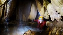 Full-Day Caving Tour from Targu Mures, Targu Mures, Day Trips