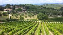 Private Tour: Chianti Region Tour by Minivan, Florence, Private Sightseeing Tours