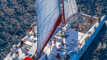 Bol and Brac Party Catamaran with Free Food and Drinks from Split, Split, Multi-day Cruises