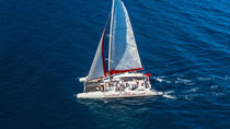 Brac and Solta Party Catamaran with Free Food and Drinks from Split, Split, Sailing Trips
