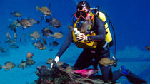 Discovery Diving Adventure from Split, Split, Scuba & Snorkelling