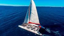 Hvar and Brac Party Catamaran with Free Food and Drinks from Split, Split, Sailing Trips
