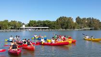 Sevilla 3-Hour Kayaking Tour on the Guadalquivir River, Seville, Private Sightseeing Tours