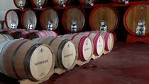 Tuscany All Day Wine Tour: Siena and San Gimignano from Rome, Rome, Day Trips