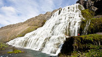 Isafjordur Shore Excursion: Dynjandi Waterfall Tour, Isafjordur