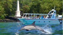 COMBO: Kealakekua Bay and Wild Dolphin Snorkel with Lunch, Big Island of Hawaii, Snorkeling