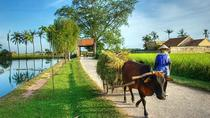 Hanoi: Duong Lam Historical Village Private Day Tour, Hanoi, Cultural Tours