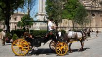 Private Horse Carriage Ride and Walking Tour of Seville, Seville, Horse Carriage Rides
