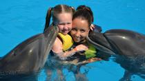 Dolphin Swimming in Sharm el Sheikh , Sharm el Sheikh, Swim with Dolphins