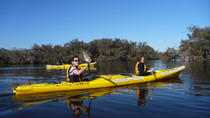 Kayak Tour on the Canning River, Perth