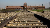 Auschwitz- Birkenau and Wieliczka Salt Mine in One Day, Krakow, Day Trips