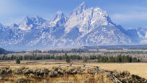 Grand Teton National Park Guided Tour From Jackson Hole, Jackson Hole, Day Trips