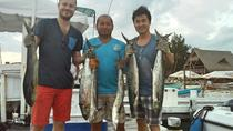 Local Fishing Tour in Isla Mujeres from Cancun, Cancun, Swim with Dolphins