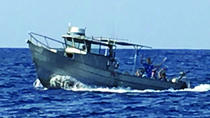 Hilo Sportfishing Charter 4 hour, Big Island of Hawaii, Fishing Charters & Tours