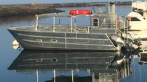 Private Charter: Private Cruise in Waikoloa, Big Island of Hawaii, Private Tours