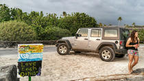 Jeep Off-Roading, Brewery Tour and Sunset Dinner, Big Island of Hawaii, Full-day Tours