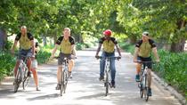 Private Cycling Tour: Wellington Winelands from Cape Town, Cape Town, Wine Tasting & Winery Tours