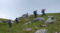 Full-Day Private Guided Hike in the Scottish Highlands from Aviemore, Aviemore