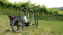 E-bike Tour: Amarone Tasting at Zanoni winery, Verona, Bike & Mountain Bike Tours