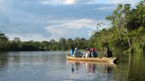 3-Day Wildlife Tour in Pacaya Natural Reserve, Iquitos