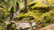 Whistler Full-Day Mountain Bike Tour, Whistler, Bike & Mountain Bike Tours