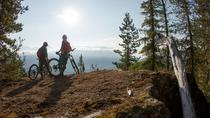 Whistler Half-Day Mountain Bike Tour, Whistler