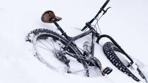 Fat Bike Tours, Fort Collins, Beer & Brewery Tours