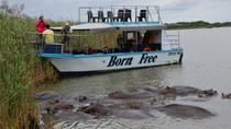 St Lucia Wetlands Day Trip from Durban Including Estuary Boat Ride, Durban, Day Trips