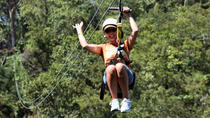 Falmouth Shore Excursion: Private Zipline Adventure, Falmouth, Ports of Call Tours