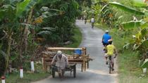 Oudong's Country Trails Bike Tour from Phnom Penh, Phnom Penh, Bike & Mountain Bike Tours